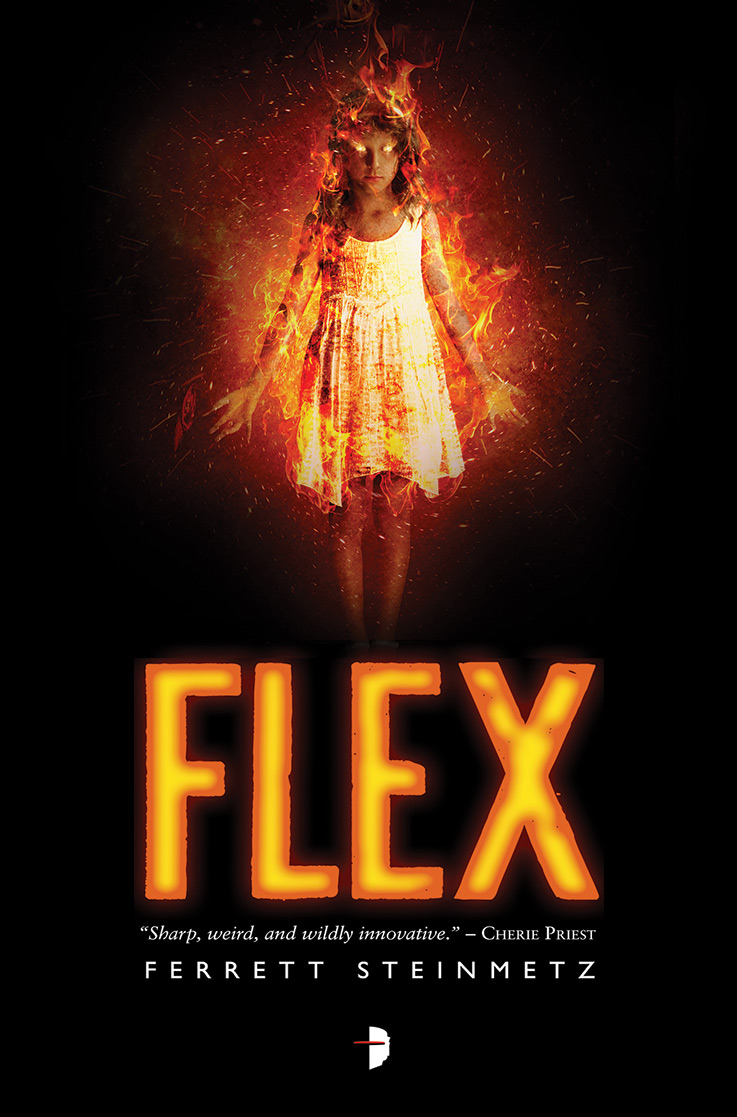 Ferrett Steinmetz -- Flex