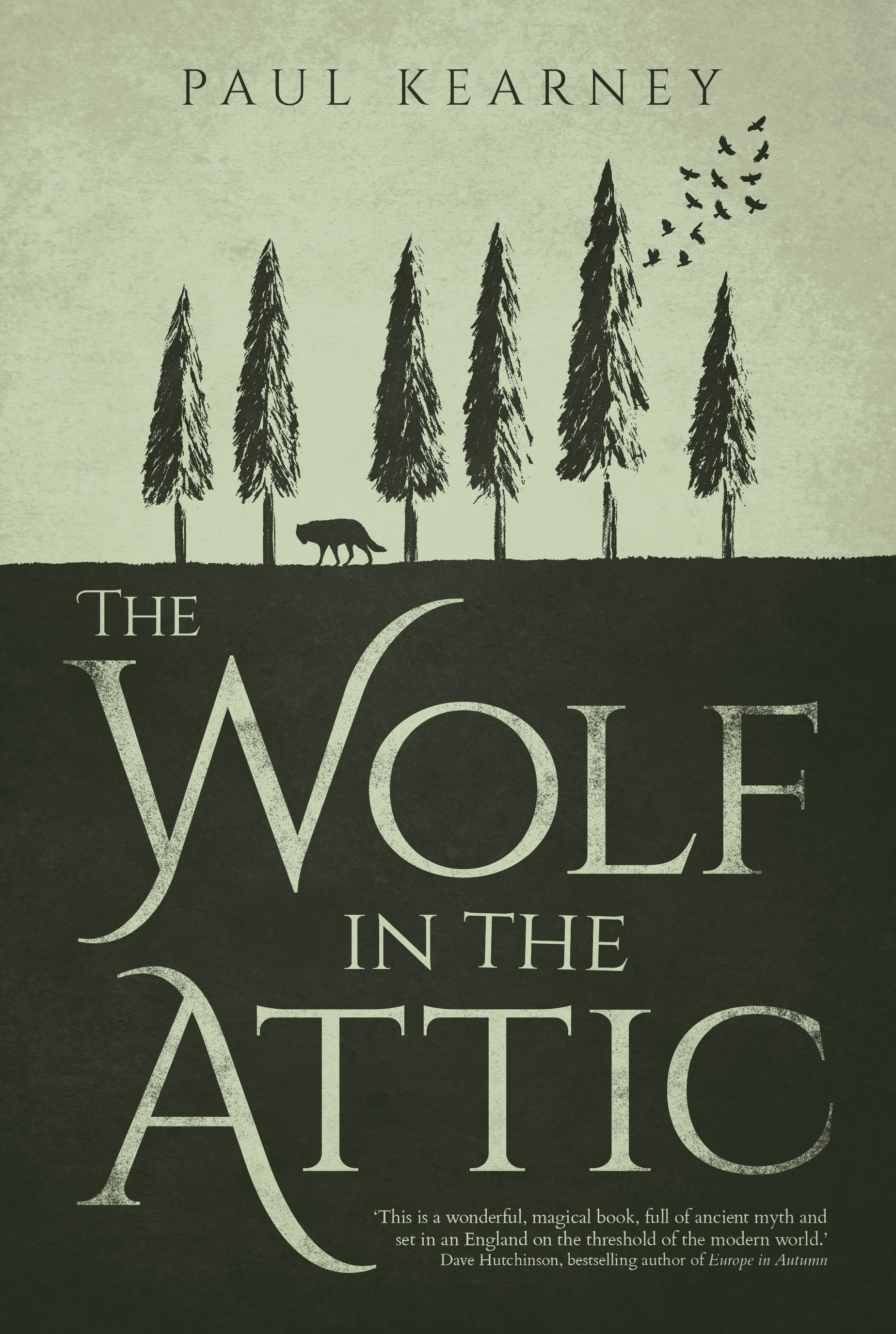 The Wolf in the Attic cover
